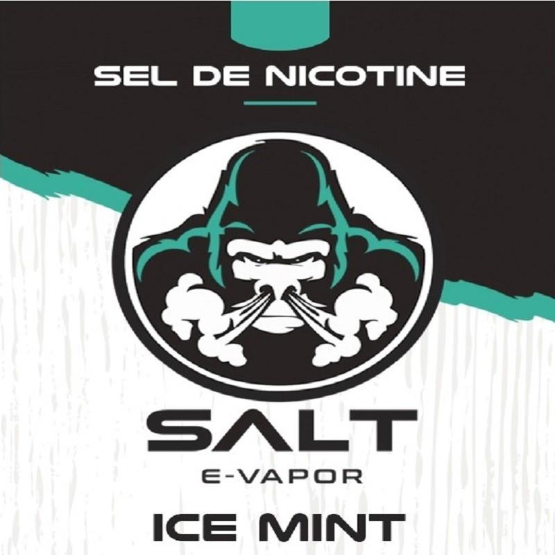 Ice mint sel de nicotine de French Liquide